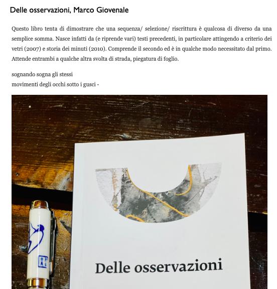 """recensione di """"Delle Osservazioni"""" di Marco Giovenale"""